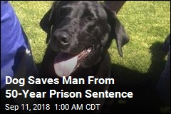 Dog Saves Man From 50-Year Prison Sentence