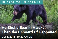 Soldier Severely Injured by Falling Bear in Alaska