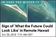 Sign of 'What the Future Could Look Like' in Remote Hawaii