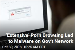 'Extensive' Porn Browsing Led to Malware on Gov't Network