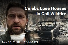 Celebs Lose Houses in Cali Wildfire