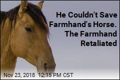 He Couldn't Save Farmhand's Horse. The Farmhand Retaliated