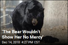 'The Bear Wouldn't Show Her No Mercy'