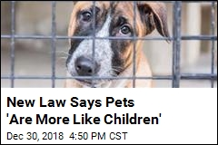 Cali Pets About to Get Some Serious Rights