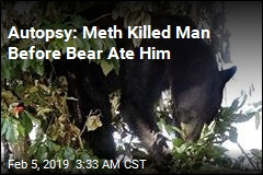 Meth Overdose, Not Bear Killed Tennessee Man