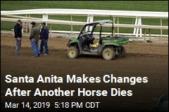 Santa Anita Makes Changes After Another Horse Dies