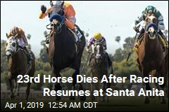 23rd Horse Dies After Racing Resumes at Santa Anita