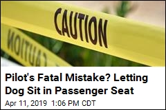 Pilot's Fatal Mistake? Letting Dog Sit in Passenger Seat