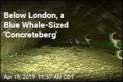 London's Fatberg Topped by Whale-Sized 'Concreteberg'