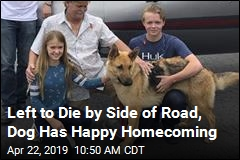2 Years After Puppy Went Missing, a Homecoming