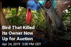 Bird That Killed Its Owner Now Up for Auction