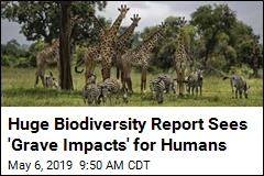 Huge Biodiversity Report Sees 'Grave Impacts' for Humans