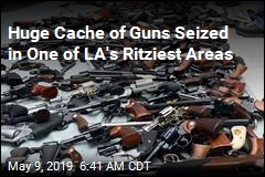 Huge Cache of Guns Seized From LA Mansion