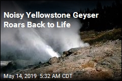 Noisy Yellowstone Geyser Roars Back to Life