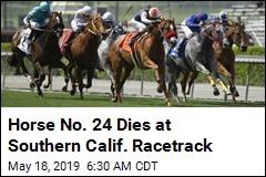 Horse No. 24 Dies at Southern Calif. Racetrack