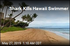 Shark Kills Hawaii Swimmer