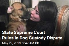 State Supreme Court Rules in Dog Custody Dispute