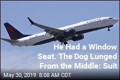 Plane Passenger Sues After Emotional Support Dog Mauling