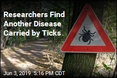 Researchers Find Another Disease Carried by Ticks