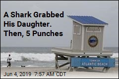Dad Punched Shark to Save Daughter