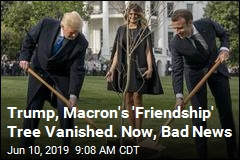 Reports: Trump-Macron 'Friendship' Tree Bit the Dust