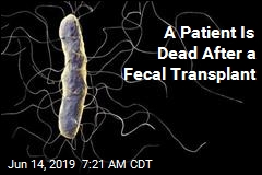 A Patient Is Dead After a Fecal Transplant
