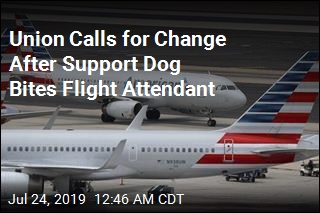Emotional Support Dog Bites Flight Attendant