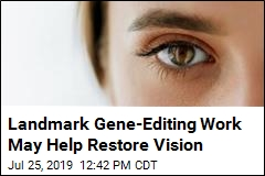 Landmark Gene-Editing Work May Help Restore Vision