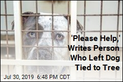 'Please Help,' Writes Person Who Left Dog Tied to Tree