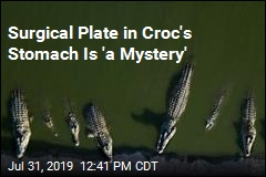 He Gutted Croc, Now Hopes to 'Solve Cold Case'