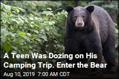 A Teen Was Dozing on His Camping Trip. Enter the Bear