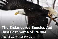 The Endangered Species Act Just Lost Some of Its Bite