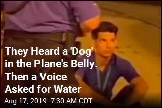 They Heard a 'Dog' in the Plane's Belly. Then a Voice Asked for Water