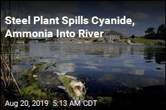 Steel Plant Spills Cyanide, Ammonia Into River