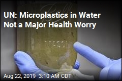 UN: Microplastics in Water 'Not a Human Health Risk'