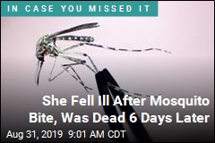 Woman Got Mosquito Bite, Ended Up Dead