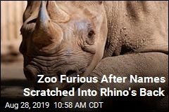 Zoo Calls Out 'Stupidity' of Visitors Who Wrote on Rhino