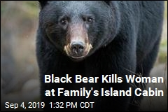 Black Bear Kills Woman at Family's Island Cabin