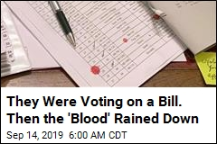 They Were Voting on a Bill. Then the 'Blood' Rained Down