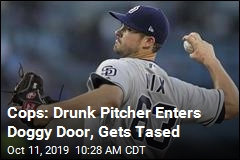 Cops: Drunk Pitcher Enters Doggy Door, Gets Tased
