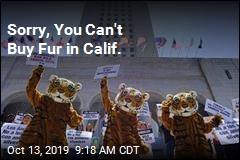 Calif. Bans Fur Products, Most Circus Animals