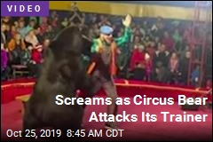 Day at the Circus Turns Chaotic: 'Everyone Started Running'