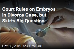 Court Rules on Frozen Embryos in Center of Divorce Case