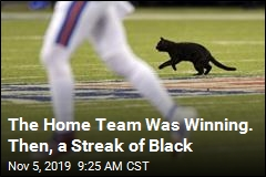 The Home Team Was Winning. Then, a Streak of Black