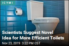 Scientists Suggest Novel Idea for More Efficient Toilets