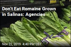 Don't Eat Romaine Grown in Salinas: Agencies