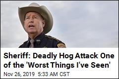 Sheriff: Texas Woman Killed by Feral Hogs