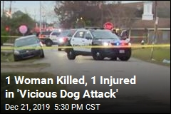 1 Woman Killed, 1 Injured in 'Vicious Dog Attack'