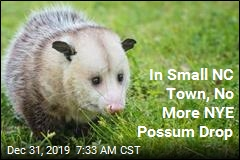 No Possums Will Fall From the Sky Tonight in This Town
