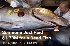 Someone Just Paid $1.79M for a Dead Fish
